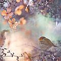 Hydrangea Fantasy by Teuni