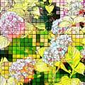 Hydrangea by Jeffrey Todd Moore