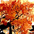 Hydrangea Macro In Autumn by Elizabeth Tillar