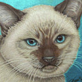 I Am Siamese If You Please by Beverly Fuqua