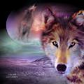 I Am Wolf by Carol Cavalaris
