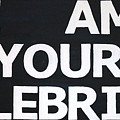 I Am Your Celebrity by Jonathan Perlstein
