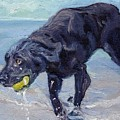 I Got The Ball I Got The Ball  by Sheila Wedegis