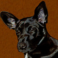 I Hear Ya - Dog Painting by Patricia Barmatz