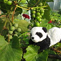I Love Grapes Says The Panda by Ausra Huntington nee Paulauskaite