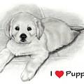 I Love Puppies Golden Retriever by Joyce Geleynse