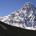 I Love The Mountains Of Banff National Park by Tiffany Vest