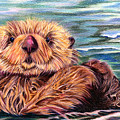 I Otter Be In Pictures by Nancy Cupp