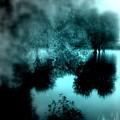 I Riflessi Della Nebbia by Irene Spedicato