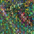I See Spots by Linda Sannuti