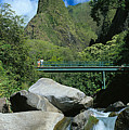 Iao Needle And Creek by Carl Shaneff - Printscapes