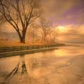 Ice And Light by Tara Turner
