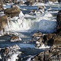 Ice Cascades 2287 by Captain Debbie Ritter