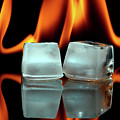 Ice Cubes On Fire by Pics For Merch