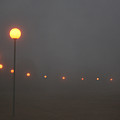 Ice Fog And Park Lamps by Andrea Lawrence
