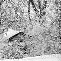 Ice Hollow by Albert Stewart