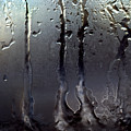 Ice On Window 3 by Lee Santa