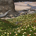 Ice Plants On Moss Beach by Karen  W Meyer