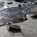 Ice Snakes by Tiffani Burkett