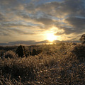 Ice To Sun by Martie DAndrea