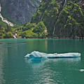 Ice Tracy Arm Alaska by Heather Coen