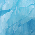 Iceberg by Arterra Picture Library