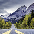 Icefield Parkway by Daryl L Hunter