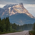 Icefields Parkway Banff National Park by Joan Carroll