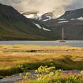 Iceland 33 by Valeriy Shvetsov