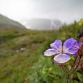 Iceland 35 by Valeriy Shvetsov