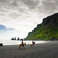 Icelandic Horses On The Beach In Vik Iceland by Matthias Hauser