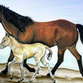 Icelandic Mare And Foal by Shari Nees