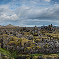 Icelands Mossy Volcanic Rock by Michael Ver Sprill