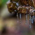Icicles 1 by Dan Ketelsen