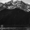 Iconic Alaska by Erika Fawcett
