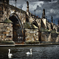 Iconic Bridge In Prague by David Resnikoff