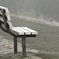 Icy Bench In The Fog by Sharon Talson