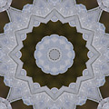 Icy Lace Kaleidoscope by Robyn Stacey