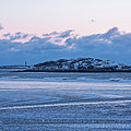 Icy Pattern On Good Harbor Beach Gloucester Ma by Toby McGuire