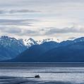 Icy Strait Fishing by John Greim