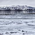 Icy Winter by David Millenheft