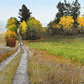 Idaho Backroad Autumn by R christopher Vest
