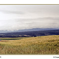 Idaho Valley by R Thomas Berner