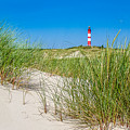 Idyllic Dunes And Lighthouse At North Sea by JR Photography