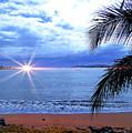 Idyllic Paradise In Bocas Del Toro, Panama II by Al Bourassa