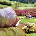 Idyllic Rural Austria by Menega Sabidussi