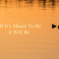 If It's Meant To Be It Will Be by Bill Wakeley