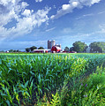 If Seasons All Were Summers by Phil Koch