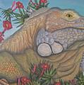Iguana Iguana by Jeniffer Stapher-Thomas