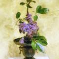 Ikebana Lilacs by Francesa Miller